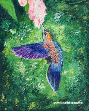 C9. Kolibri